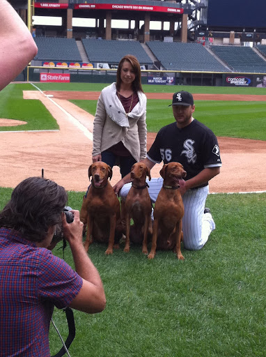 Mark and Jamie, with their own dogs, Diesel, Duke, and Drake, pose for the Adopt-a-Pet.com billboard.