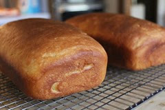 water-proofed-bread_175