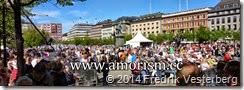 DSC01649.JPG Jesusmanifestationen 2014 Kungsträdgården med amorism