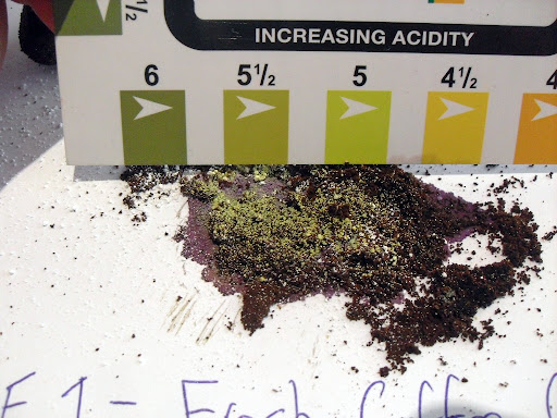 pH test done on fresh coffee grounds