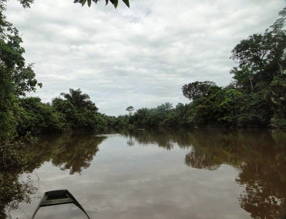 Rio Anauà - Rorainopolis, Roraima