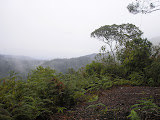 A cloudy day at Bukit Manja on Pangulubao (Daniel Quinn, August 2011)