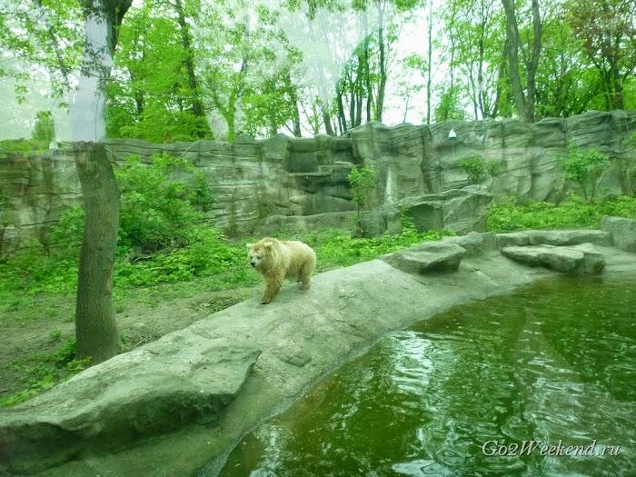 Kiev_Zoo_22.jpg