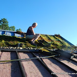 Mountain Moss-NC Arboretum Green Roof-4-Web.JPG