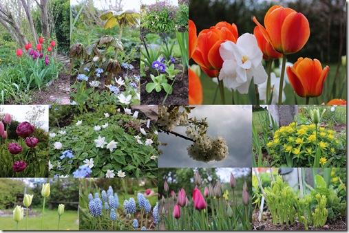 Haven i maj 13