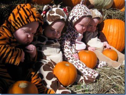 1st halloween quads