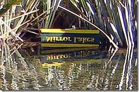 Milford-Sound20