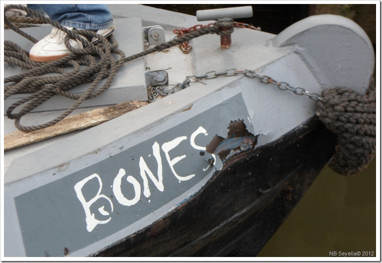 SAM_1168 Damage to Bones