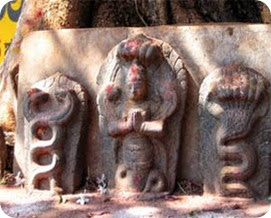 nagas_the_kerala_temples_image