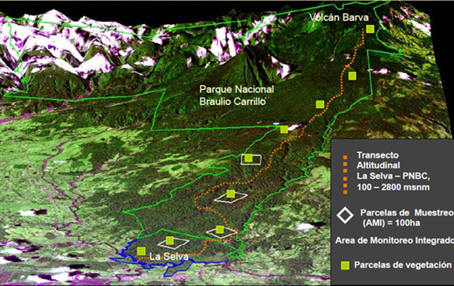 Tropical tree communities are moving up mountainsides to cooler habitats as temperatures rise, a study in Global Change Biology has found. This map shows the research team's study plots (green squares) in Volcán Barva, Costa Rica, stretching from the lowlands up the mountain to a height of 2800 metres. Graphic: Johanna Hurtado