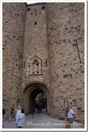 Carcassonne-101