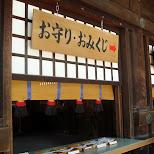 omikuji in Yoyogi, Tokyo, Japan