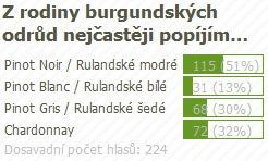 anketa_burgundska