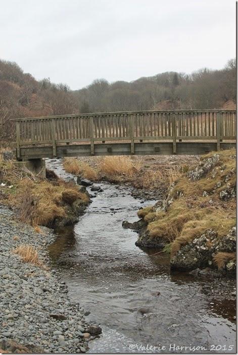 16-bridge