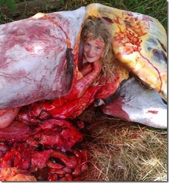 gadis bogel dalam perut kuda 1