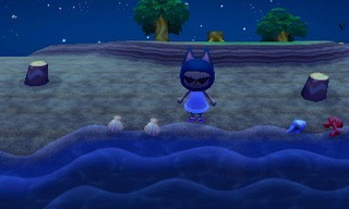 animal crossing new leaf beetle catch guide 04