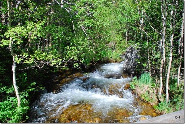 06-23-14 A RMNP Alberta Falls Loop (14)