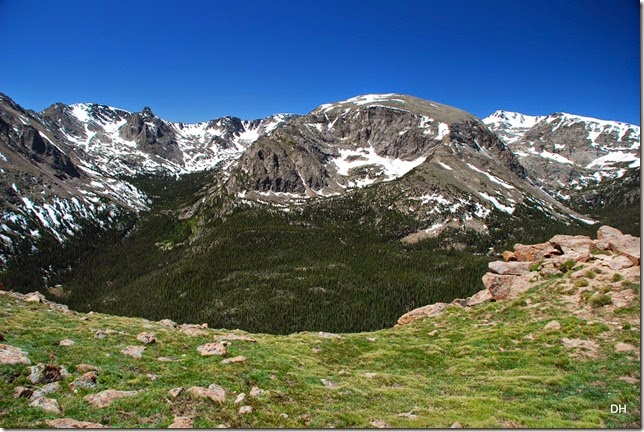 06-19-14 A Trail Ridge Road RMNP (114)