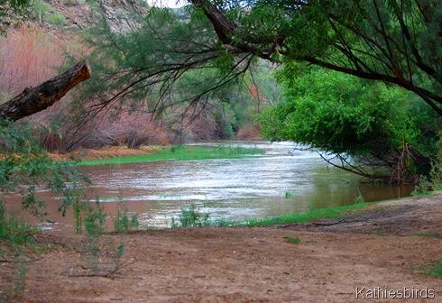 11. Gila river-kab