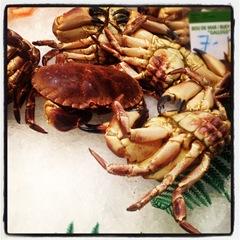 crabs at la Boqueria