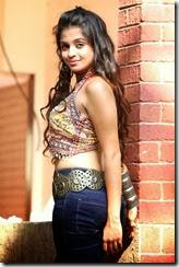 Actress_Sheena_Shahabadi_stylish_Photos