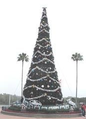 Disney trip Epcot huge Christmas tree