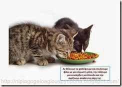 Τι ξέρω για τα ζώα(4)