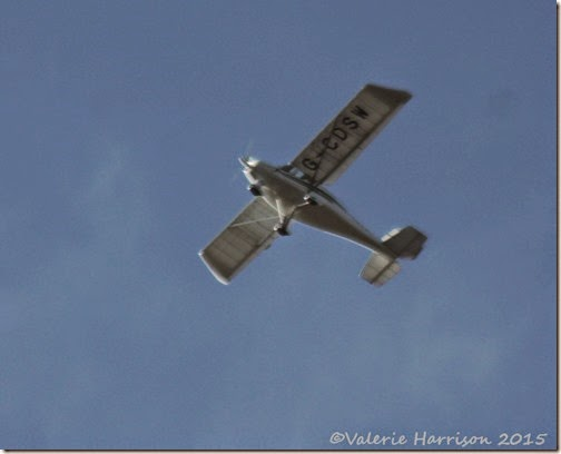 14-plane