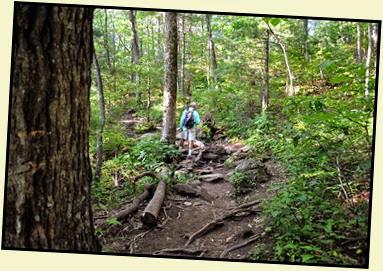 03e - BHR Trail