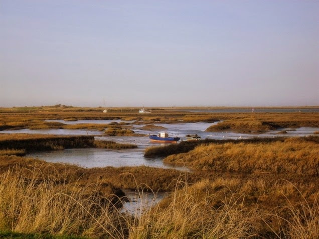 salt marsh creeks - Burnham Overy Staithe
