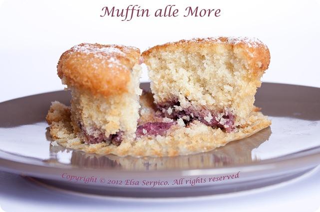 Muffin-more-2