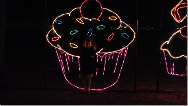 Prairie Lights 133