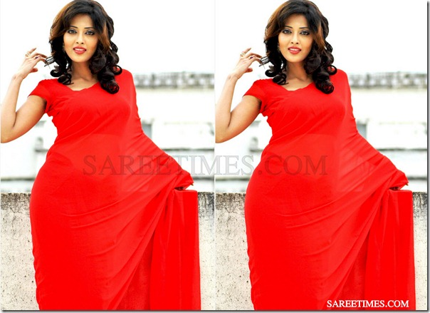 Suma_Red_Designer_Sari