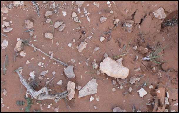 IMG_1108 MysteriousWhite Rock