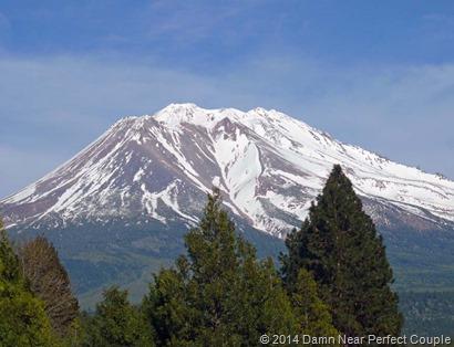 Mount Shasta1