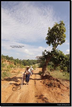Myanmar416