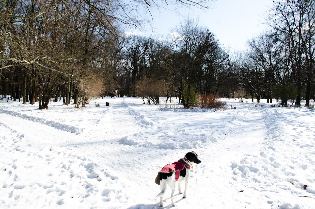 Abby at Maksimir Park