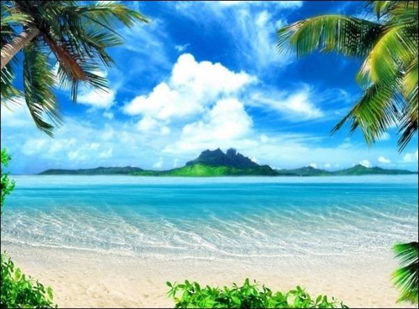 هاواي5