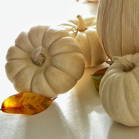 White Pumpkins & Neutral Fall Decor
