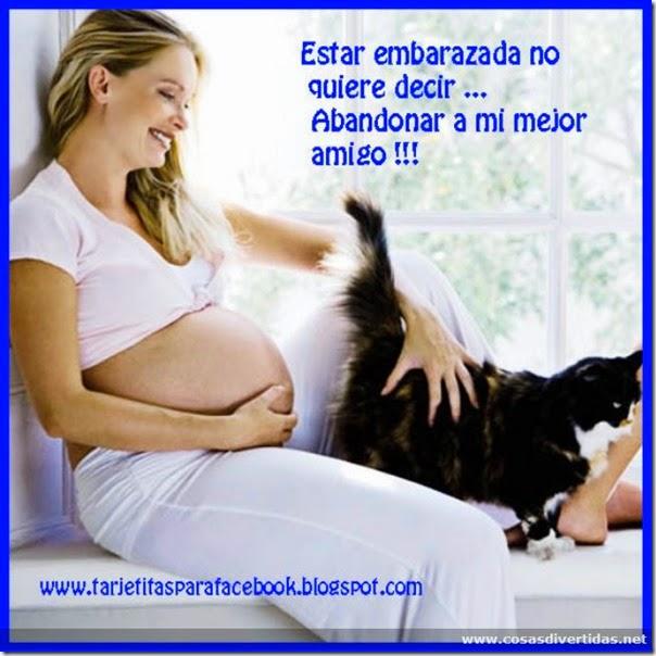 22-humor embarazadas cosasdivertidas net (17)