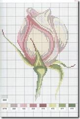 botao-de-rosa-flor-ponto-cruz-grafico