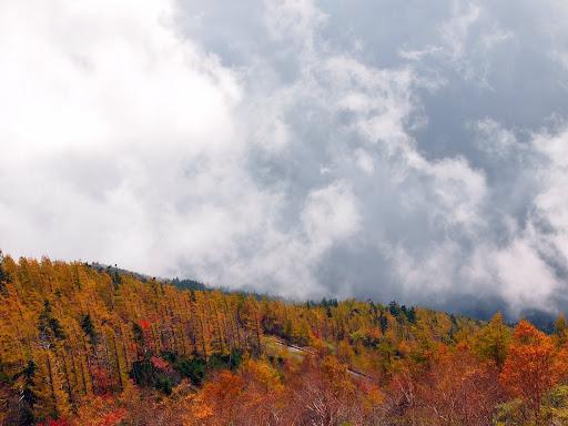 [写真]富士山五合目からの紅葉