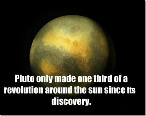 great_images_that_go_together_with_astounding_facts_640_09