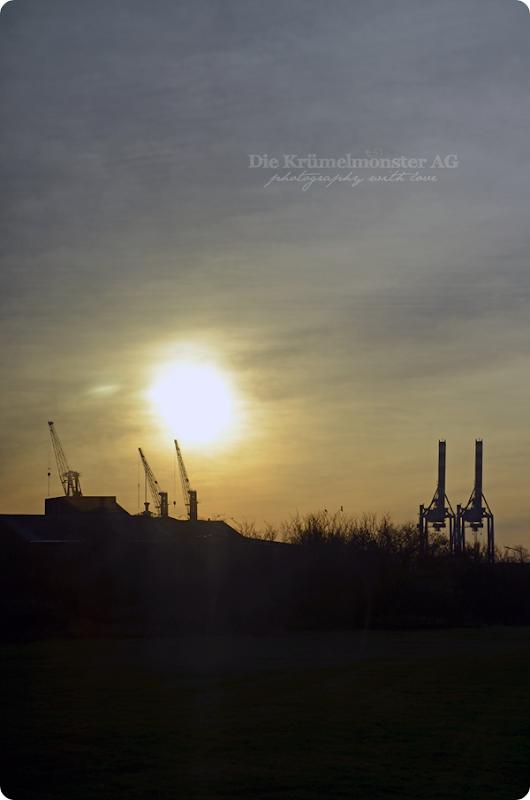 Bremerhavenrundfahrt 261113 (15)