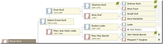 koch family tree
