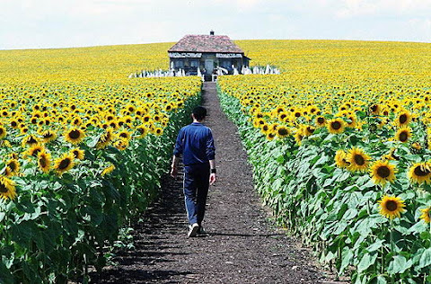 фільми з Україною