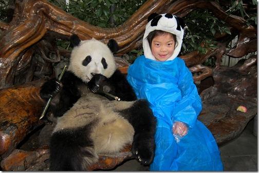 IMG_2962LR_Pandas