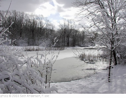 'winter' photo (c) 2003, Seth Anderson - license: http://creativecommons.org/licenses/by-sa/2.0/