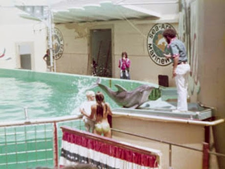 Rodney Treat at Sea-Arama Marineworld, 1975.