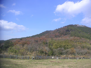 20121201-010.jpg